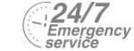 24/7 Emergency Service Pest Control in Shoreditch, E2. Call Now! 020 8166 9746